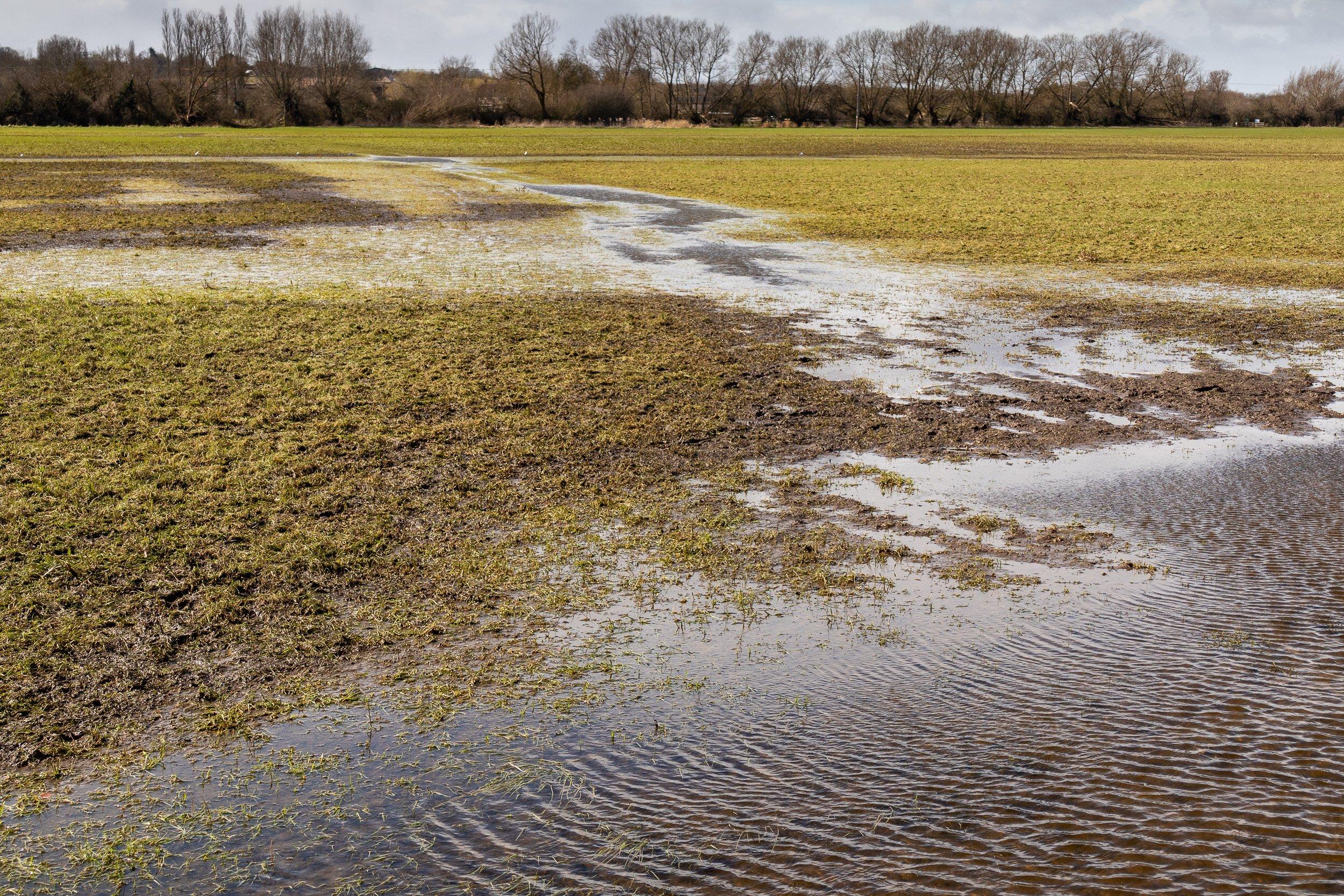 Winter Flooding Recedes